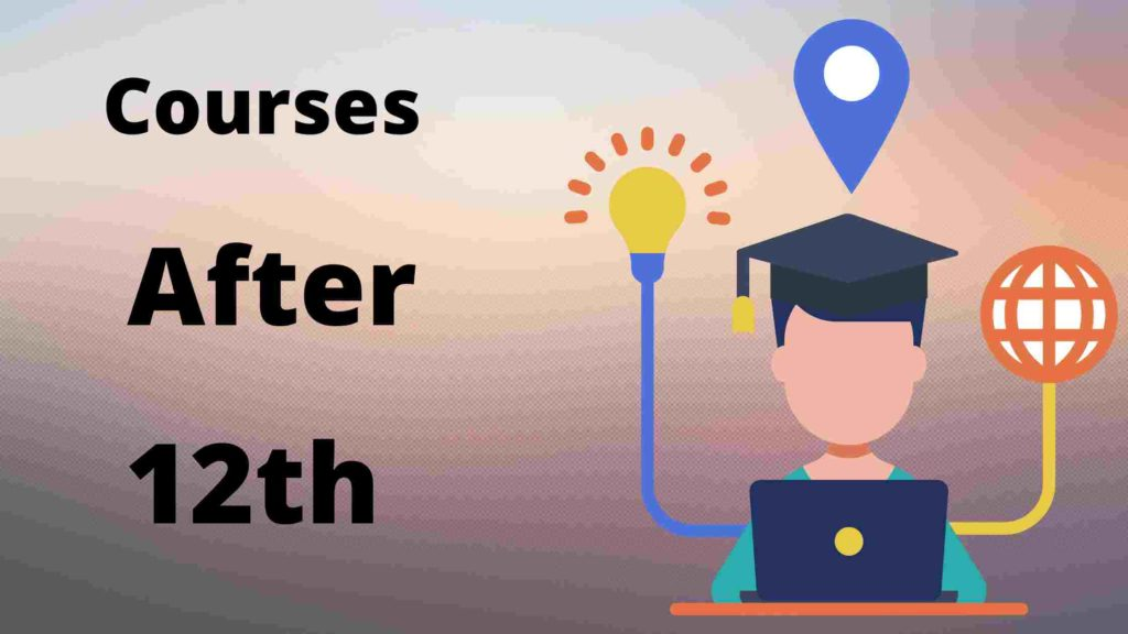 courses after 12 hindi