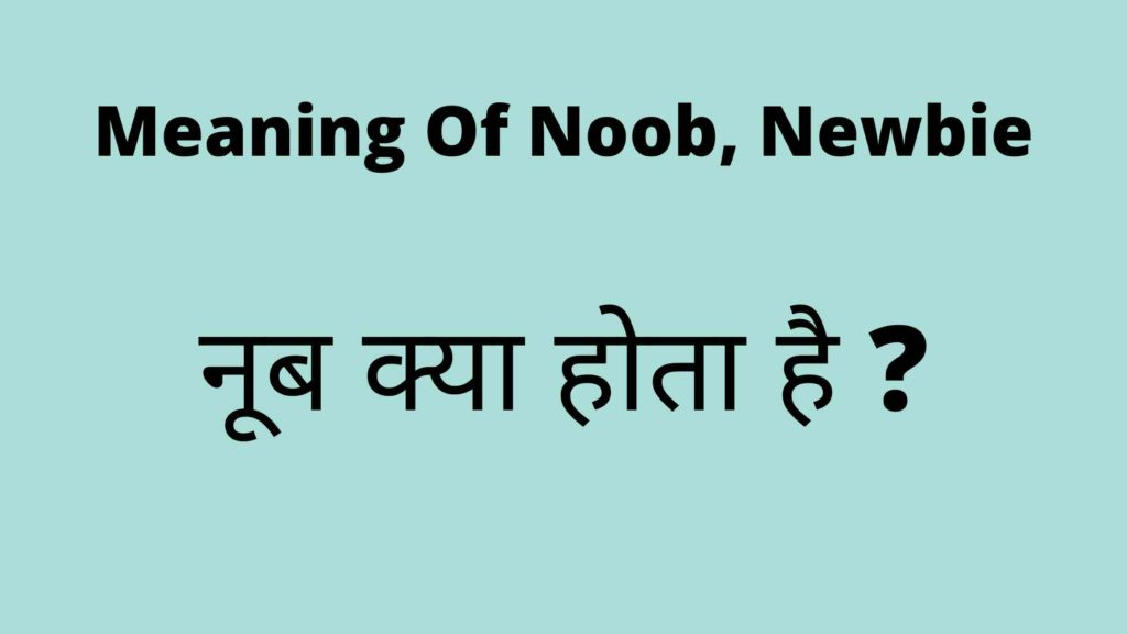 Newbie, newb, noob, nub meaning in hindi, full form